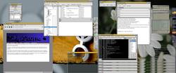 Muhrisoft meets Gtk+ Inc.. read the pronto compose window for more info.